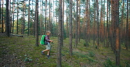 Hiker girl child goes in the forest Stock Footage