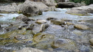 Mountain river Stock Footage