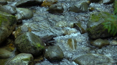 Rivers in Canada Super Slow Motion Stock Footage