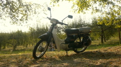 Single bike (motorcycle chopper) in the park, the forest, side view Stock Footage