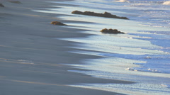 The shoreline and beach of the Pacific Ocean. Stock Footage