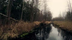 Stream in the forest in late autumn Stock Footage