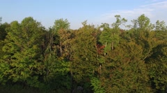 An aerial shot of a rural landscape and forest in an isolated are of Vermont, Stock Footage