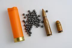 Sleeve and shot hunting ammunition Stock Photos