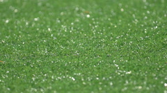 Detail of a turf soccer football field. Stock Footage