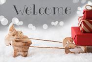 Reindeer With Sled, Silver Background, Text Welcome Stock Photos