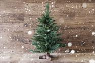 Christmas Tree, Snowflakes, Aged Wooden Background, Copy Space Stock Photos
