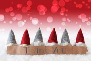 Gnomes, Red Background, Bokeh, Text Thank You Stock Photos