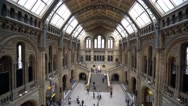 Wide angle aerial view over the entrance lobby of Natural History Museum Stock Footage