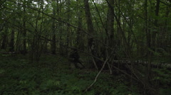 The military in the forest sitting in an ambush near the tree. Soldier hiding Stock Footage