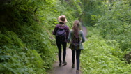 Hikers Walk (Away From Camera) Down Trail, Woman Touches Plants Along The Way Stock Footage