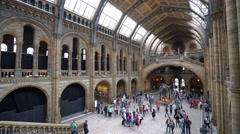 Wonderful architecture at Natural History Museum in London Stock Footage