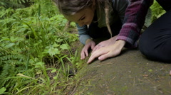 Curious Women Hikers Watch A Mole Beside A Hiking Trail Stock Footage