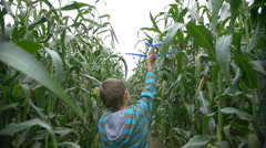 Boy dreams of becoming a pilot in the corn field, boy playing with plane Stock Footage
