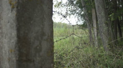 Soldiers go through the woods. Military with arms sent to the thickets of green Stock Footage