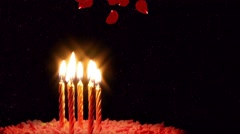 Candles on Cake and Falling Rose Petals Stock Footage