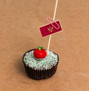 Cupcake with flag of montenegro Stock Photos