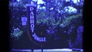 1951: parrot jungle hotel bar casino lounge establishment FLORIDA Stock Footage