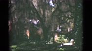 1951: park visitor walking beneath canopy of giant trees at recreational park Stock Footage