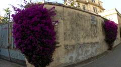 Portoferraio, Italy on the island of Elba. Stock Footage