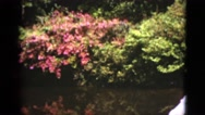 1951: beautiful gardens with the river and woman FLORIDA Stock Footage