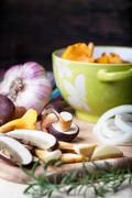 Sliced boletus with chanterelle and onion. Cooking musrooms Stock Photos