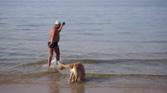 Man playing with his pet dog on beach Stock Footage