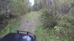 Off-road. Forest. The car goes through the woods in the rise. Stock Footage