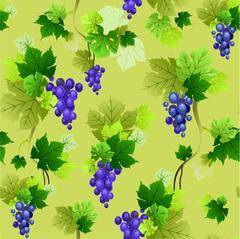 Grapes pattern on olive background Stock Illustration