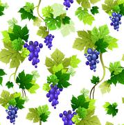 Vine pattern Stock Illustration