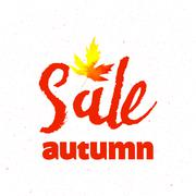 Autumn sale lettering design. Fall leaf. Label, banner template. Piirros