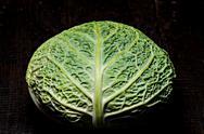 Savoy cabbage on a dark background close-up Stock Photos
