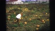 1974: garden is seen LYNBROOK, NEW YORK Stock Footage
