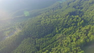 Foggy forest. drone flight Stock Footage
