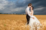 Young bride and groom posing in wheat field with dramatic sky in the back Stock Photos