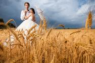 Bride and groom in wheat field with dramatic sky on the background Stock Photos