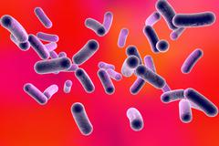 Rod shaped bacteria Stock Illustration