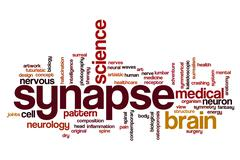 Synapse word cloud Stock Illustration