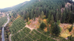 Aerial View: Canyon Orchards With a Road Dividing them Cable Cam Stock Footage
