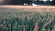 Agriculture machine spraying cereal wheat field in summer Stock Footage