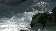 4K Alps Berchtesgaden National Park Ramsau Zauberwald Nature Learning trail Stock Footage