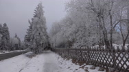 4k Street in snowy Harz mountains with fir trees and fence Stock Footage