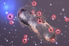 Destruction of a bacterium by silver nanoparticles Stock Illustration