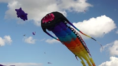 Big kites in a sky Stock Footage