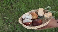 Cheese And Porcini Mushrooms Stock Footage