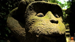 Close up of carved monkey face in stone statue in tropical jungle of Ubud  Stock Footage