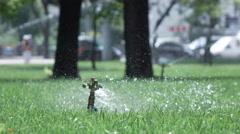 Sprinkler irrigation in park Stock Footage