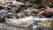 Slow motion water flowing over rocks in mountain stream Stock Footage