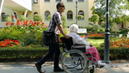 Elderly woman on a wheelchair walk in park Stock Footage