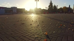 Low-angle camera moving across city street covered of autumn leaves. Slow motion Stock Footage